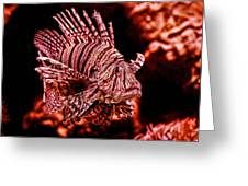 Lionfish Of The Sea Greeting Card