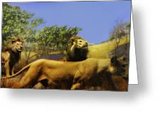 Lions Den Greeting Card