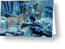Lions Of The Mist Greeting Card