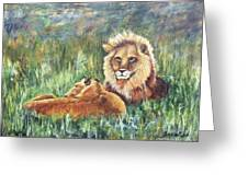 Lions Resting Greeting Card