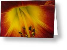 Lip Of The Lily Greeting Card