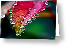 Liquid Beads Greeting Card