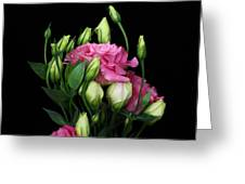 Lisianthus Flowers Greeting Card