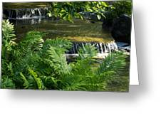 Listen To The Babbling Brook - Green Summer Zen Greeting Card