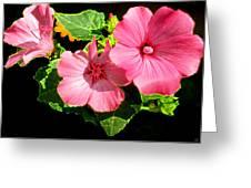 Lite Floral Greeting Card