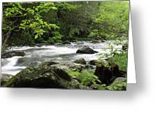 Litltle River 1 Greeting Card
