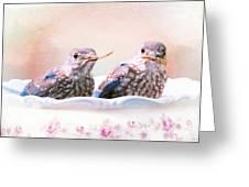 Little Bambinos Greeting Card