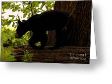 Little Black Bear Greeting Card