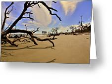 Little Blue And Driftwood Beach Greeting Card by Lisa Wooten