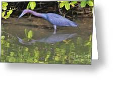 Little Blue Fishing Greeting Card