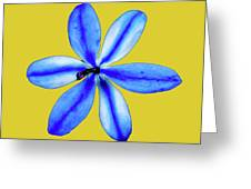 Little Blue Flower On A Yellow Background Greeting Card