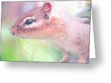 Little Chipmunk Greeting Card