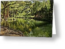 Little Cypress Creek Greeting Card