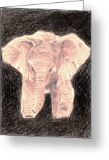 Little Elephant Greeting Card