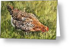 Little French Hen Greeting Card