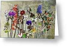 Little Garden Greeting Card