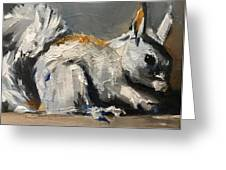 Little Gray Squirrel Greeting Card