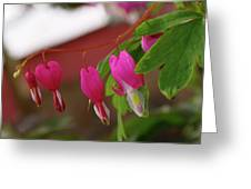 Little Hearts On A Vine  Greeting Card