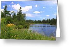 Little Iron Lake Greeting Card