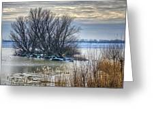 Little Island In Winter Greeting Card