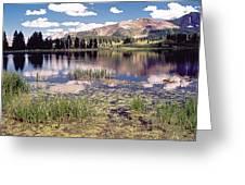Little Molas Lake Colorado Greeting Card