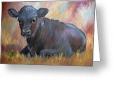 Little Moo  Angus Calf Painting Southwest Art Greeting Card