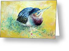 Little Night Heron Greeting Card