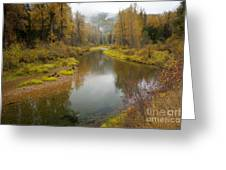 Little North Fork Greeting Card