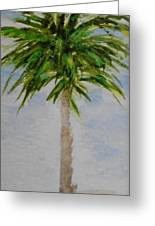 Little Palm Tree Greeting Card