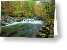 Little Pigeon River Flows In Autumn In The Smoky Mountains Greeting Card
