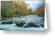 Little Pigeon River Great Smoky Mountains National Park In Fall Greeting Card