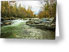 Little Pigeon River Greenbrier Area Of Smoky Mountains Greeting Card