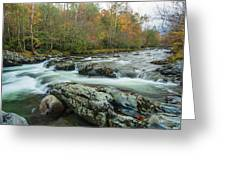 Little Pigeon River In Autumn In Smoky Mountains In Autumn Greeting Card