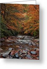 Little Pigeon River In Autumn Greeting Card