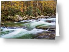 Little Pigeon River In Fall In The Smokies Greeting Card