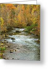Little Pigeon River In Fall Smoky Mountains National Park Greeting Card