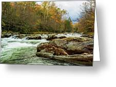 Little Pigeon River In The Greenbrier Section Of Smoky Mountains Greeting Card