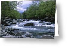 Little Pigeon River Greeting Card