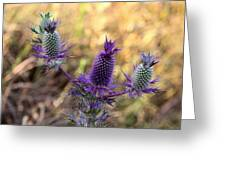 Little Purple Pineapples Greeting Card