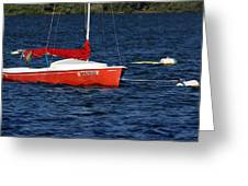 Little Red Sailboat Greeting Card