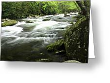 Little River 3 Greeting Card
