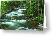Little River Tremont Area Of Smoky Mountains National Park Greeting Card