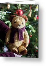 Little Sweet Teddy Bear With Knitted Scarf Under The Christmas Tree Greeting Card