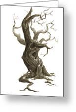 Little Tree 78 Greeting Card