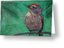Little Warbler Greeting Card