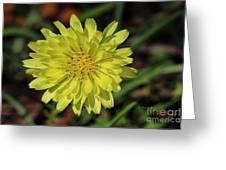 Little Wild Yellow Greeting Card