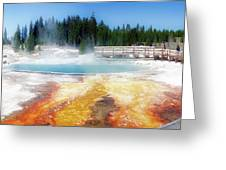 Live Dream Own Yellowstone Park Black Pool Text Greeting Card