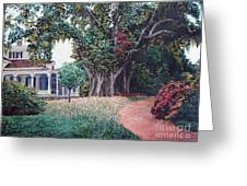 Live Oak Gardens Jefferson Island La Greeting Card