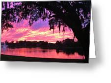 Live Oak Sunset Greeting Card