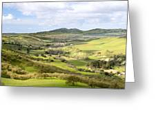 Livermore Valley Greeting Card